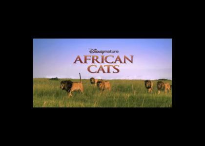 African Cats feat. Samuel Jackson