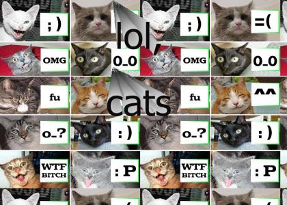 If cats had emoticons