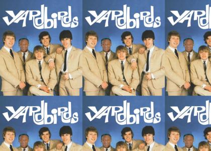 Cosby joins the Yardbirds