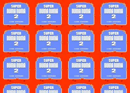 Numa Numa NES