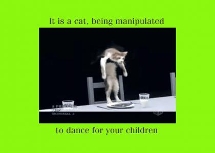 Cat Manipulation