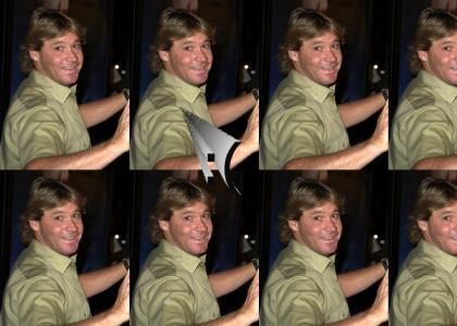 Steve Irwin...