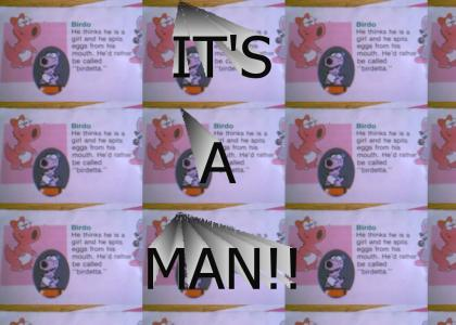 Birdo's Gender REVEALED!