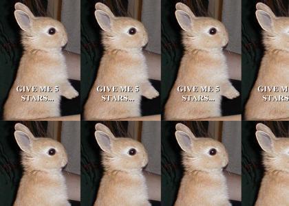 Bunny Ransom