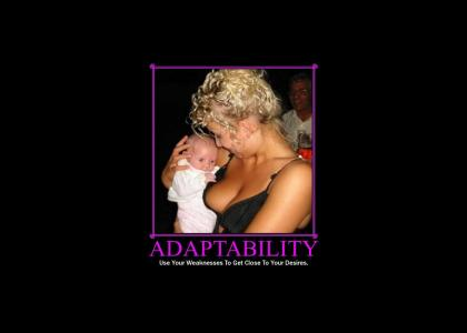 Motivator: Adaptability (updated)