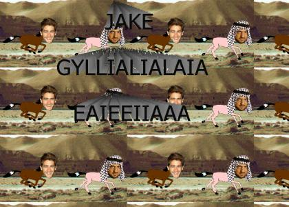Hassan and Gyllenhaal: Part 6