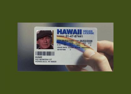 dumb license
