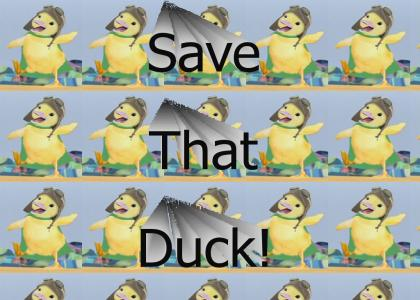 Save That Duck!