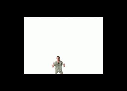 Steve Irwin vs Stingray