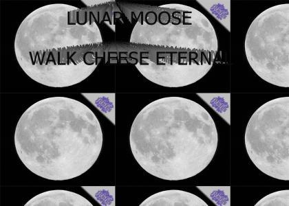 PTKFGS: LUNAR MOOSE