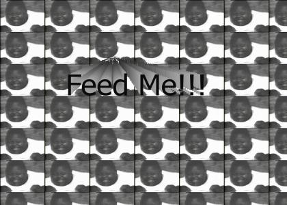 Feed The Children in Africa