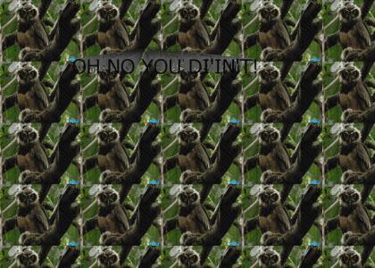 O RLY NO U DI'IN'T
