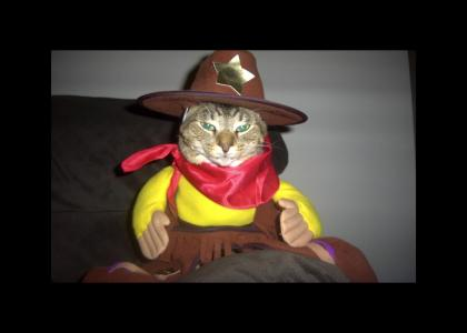 Walker- Kitty Cat Ranger