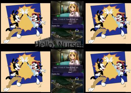 Animaniacs Love Nurses