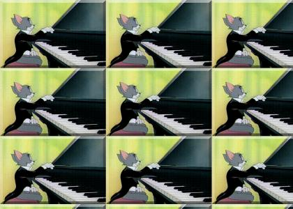 Cat on a keyboard performs a YTMND composition