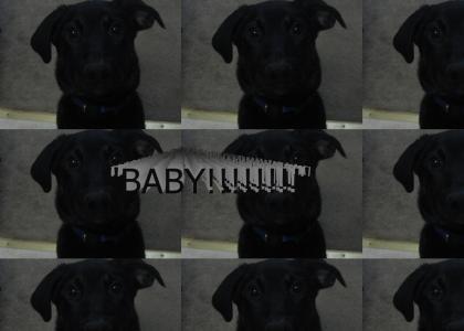 BABY!!!!!!!!!!!!!!!!!!!!!