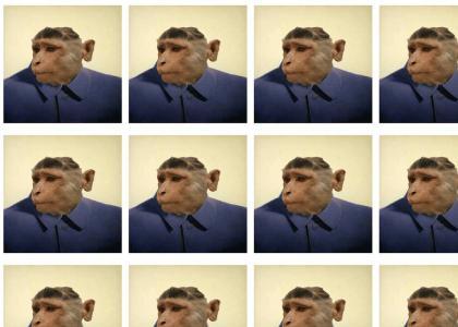 Shocking Monkey