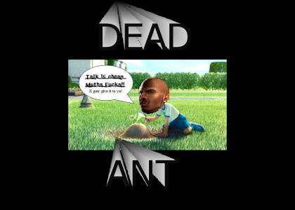 DMX is The Ant Bully