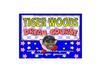 Tiger Woods Dream Course