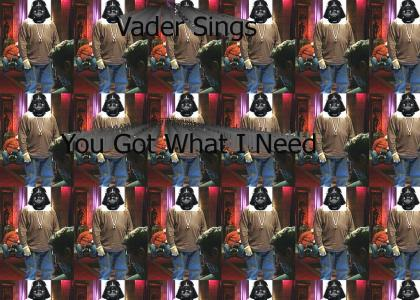 Vader Sings You Got What I Need