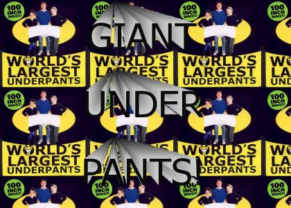 GIANT UNDERPANTS!