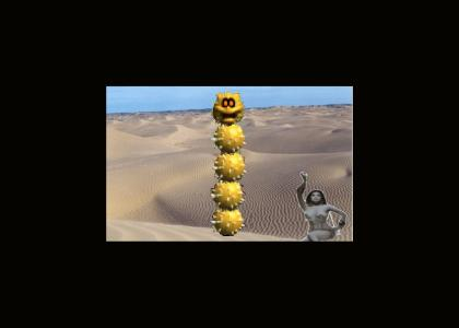 a pokey in a desert with a bellydancer