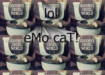 emo cat...?