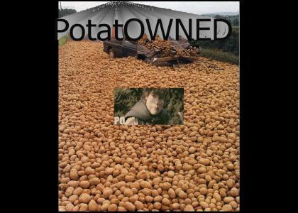 PotatOwned