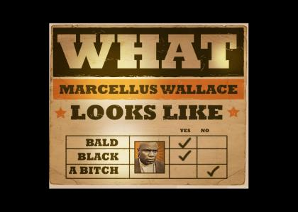 What Does Marcellus Wallace Look Like? (final exam)