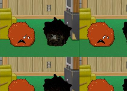 Boxy Brown yells at Meatwad
