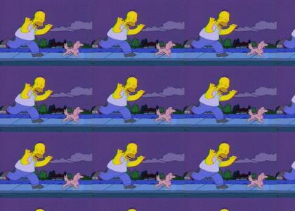 homer chases a dog