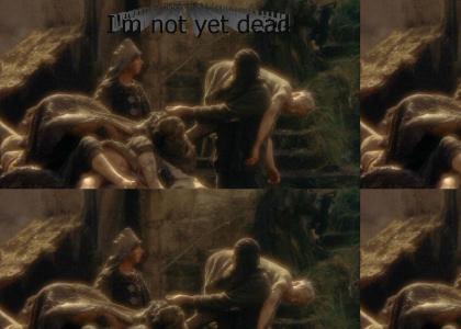I'm not dead!!!