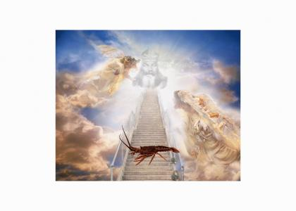 Rock Lobster Climbs A Stairway To Heaven