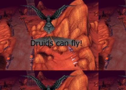 I Believe Druids Can Fly