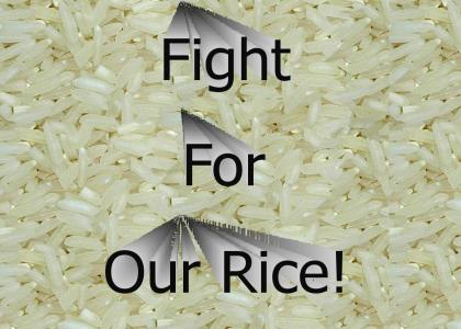 Fight For Your Rice!