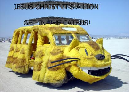 It's a lion! get in the catbus!