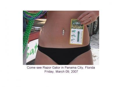 Razor Gator, Panama City 03/09/07