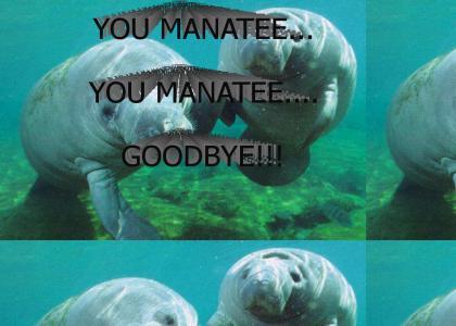 You Manatee