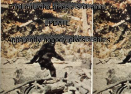 Unsolved Mystery: Bigfoot