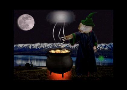 Wombat Wizard