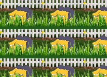 Moe In The Lawn