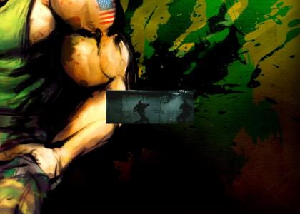 Guile Theme Fits All, really