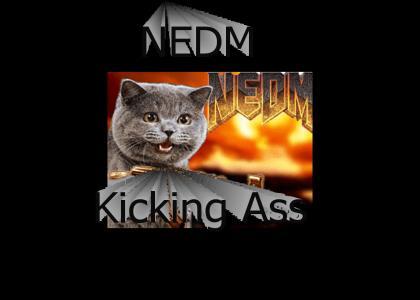 NEDM Kick Ass!