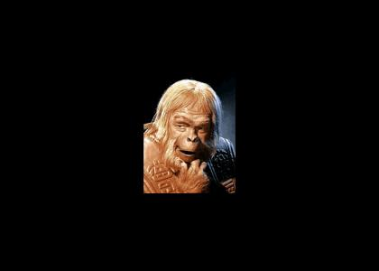 Dr. Zaius Performs Live