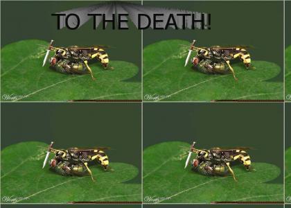 OMGZ TEH WASP!