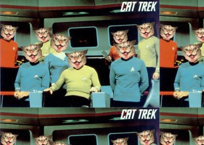 Cat Trek