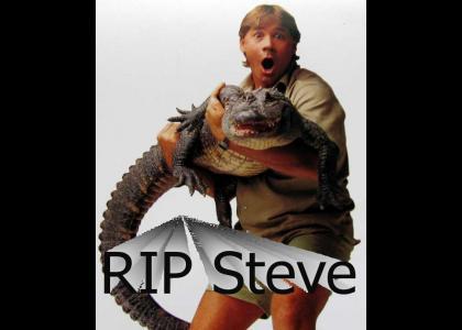 RIP STEVEN IRWIN