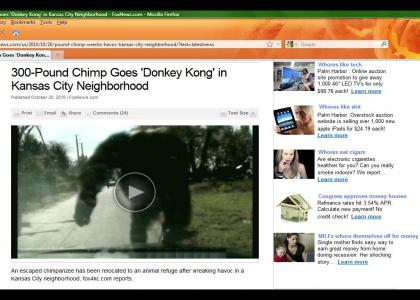 Donkey Kong Rampage