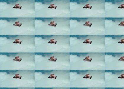 catonakeyboard evasive maneuver