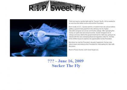 RIP Sucker The Fly